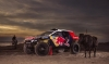 The Peugeot 2008 DKR's definitive combat livery